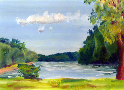 Painting - Hidden Falls State Park by Paul Thompson
