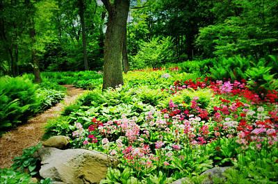 Photograph - Hidden Garden by Diana Angstadt