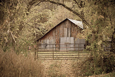 Barn In Woods Photograph - Hidden by Gregory Ballos