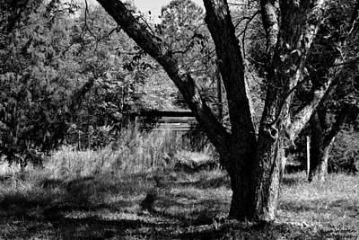 Photograph - Hidden History Black And White by Lisa Wooten