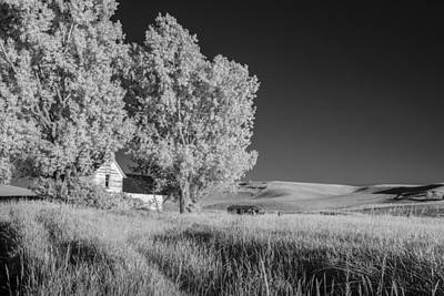 Photograph - Hidden House In Washington by Jon Glaser