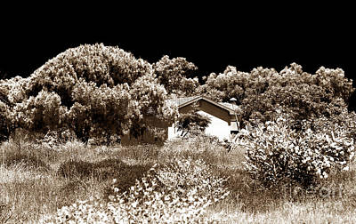 Paphos Photograph - Hidden House by John Rizzuto
