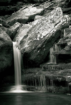 White And Black Waterfalls Photograph - Hidden In The Forest by Iris Greenwell