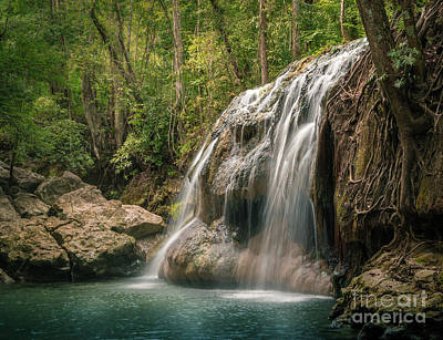Photograph - Hidden In The Jungle Of Guatemala by Jola Martysz