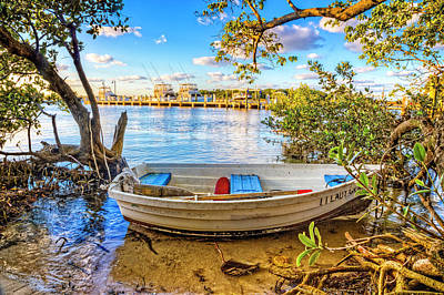 Photograph - Hidden In The Mangroves by Debra and Dave Vanderlaan