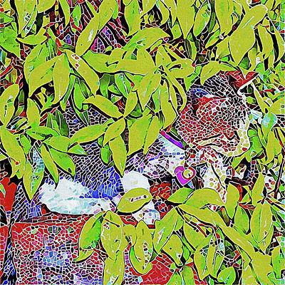 Digital Art - Hidden Kitten Mosaic by Dorothy Berry-Lound