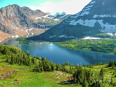 Hidden Lake Glacier National Park Art Print