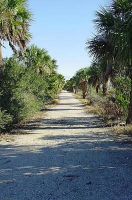 Hidden Lane Original by Suzanne Gaff