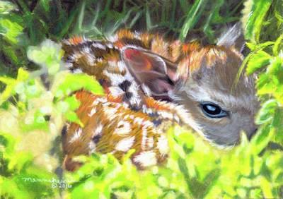 Pastel - Hidden  by Melissa Herrin