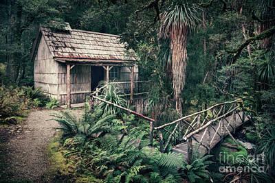Photograph - Hidden Origin by Evelina Kremsdorf