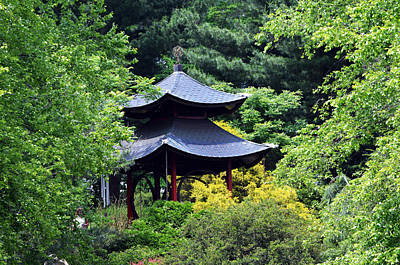 Photograph - Hidden Pagoda by Kathleen Stephens