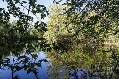 Photograph - Hidden Pond by William Norton