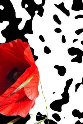 Hidden Poppy Art Print by Martine Affre Eisenlohr