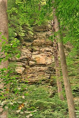 Photograph - Hidden Rock Wall by Lisa Wooten