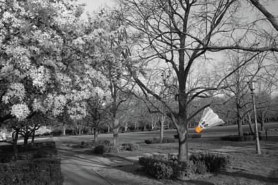 Photograph - Hidden Shuttlecock - Nelson-atkins Museum Of Art In Kansas City by Gregory Ballos