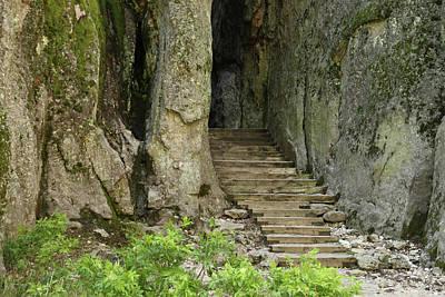 Photograph - Hidden Stairway by Marie Leslie