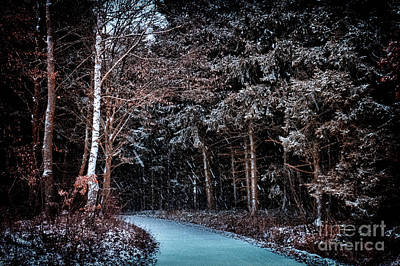 Photograph - Hidden Steps At Dawn by Benjamin Wiedmann