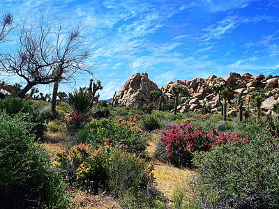 Photograph - Hidden Valley - Joshua Tree National Park by Glenn McCarthy Art and Photography