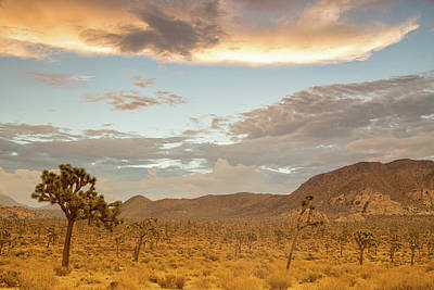 Joshua Tree Np Photograph - Hidden Valley Sunrise by Kunal Mehra