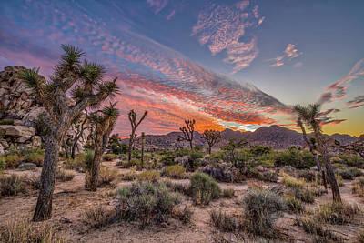 Photograph - Hidden Valley Sunset II by Peter Tellone