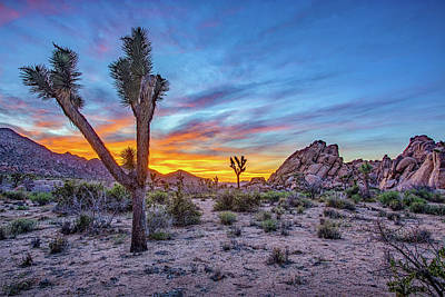 Photograph - Hidden Valley Sunset Joshua Tree by Peter Tellone