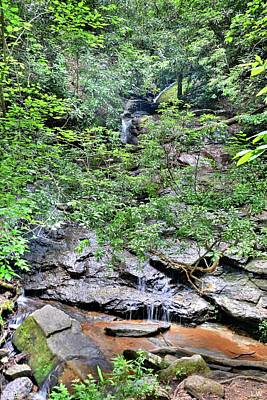 Photograph - Hidden Waterfall At Stumphouse Tunnel Oconee County South Carolina Vertical by Lisa Wooten