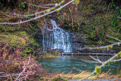 Photograph - hidden Waterfall by Bill Posner