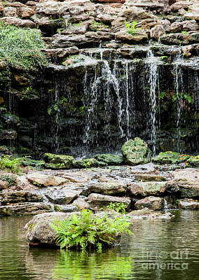 Photograph - Hidden Waterfall by Iris Greenwell