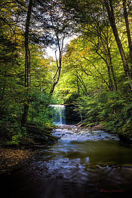 Ricketts Glen Photograph - Hidden Wonders by Marvin Spates