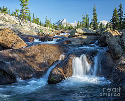 Photograph - Hidden Yosemite by Alice Cahill