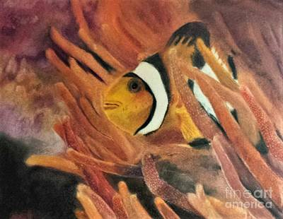 Clown Fish Drawing - Hide And Seek by Courtney Herz