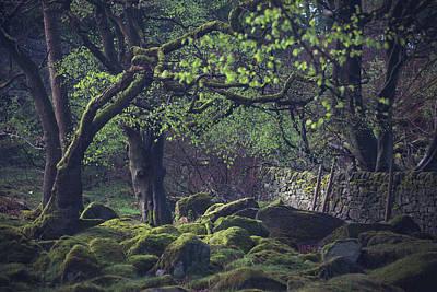 Peak District Photograph - Hideaway by Chris Dale