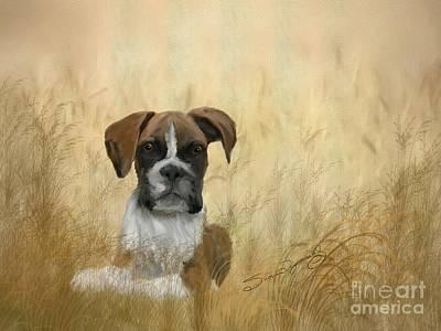 Boxer Puppy Digital Art - Hiding In A Cornfield by Susan  Lipschutz