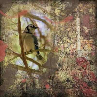 Digital Art - Hiding In Plain Sight by Nadine Berg