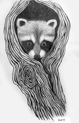 Raccoon Drawing - Hiding Out by Nick Gustafson