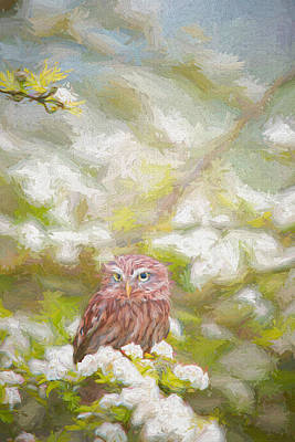Painting - Hiding Owl - Painting by Ericamaxine Price