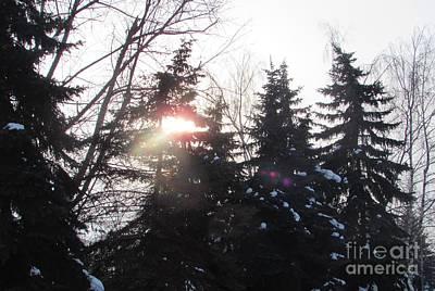 Photograph - Hiding Sun by Anna Yurasovsky