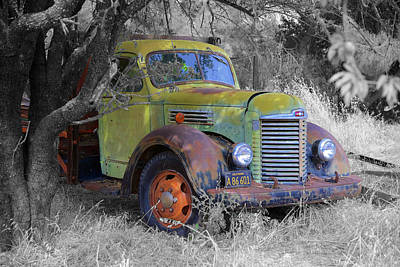 Photograph - Hiding Truck by Richard J Cassato