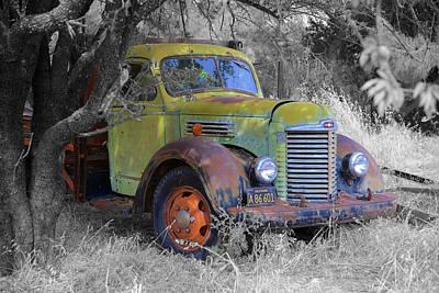 Photograph - Hiding Truck by Richard J Cassato