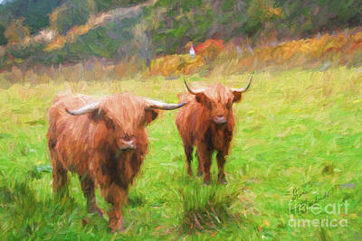 Photograph - Heilan Coos by Diane Macdonald