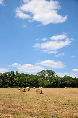 Tennessee Hay Bales Photograph - High As The Sky by Jan Amiss Photography