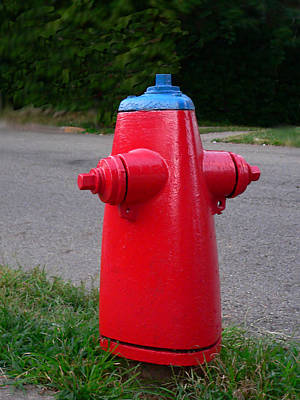 Photograph - High Class Hydrant by Kathy K McClellan