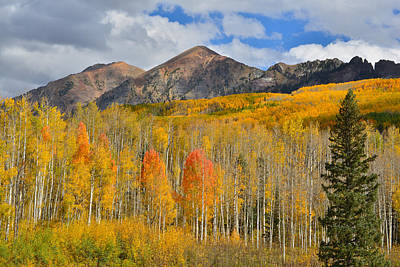 Photograph - High Country Fall Colors by Ray Mathis
