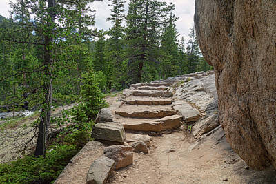 Photograph - High Country Mountain Wilderness Hiking Path by James BO Insogna