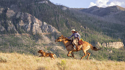 Photograph - High Country Ride by Jack Bell