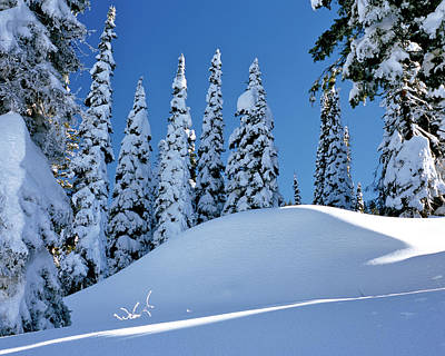 Photograph - High Country Snows by Ed  Riche