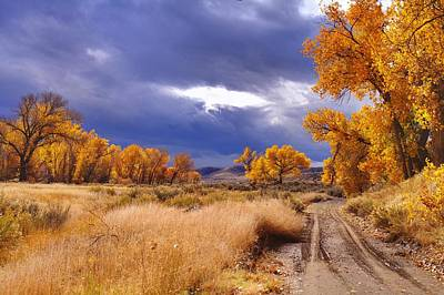 High Desert Autumn II Art Print by SB Sullivan