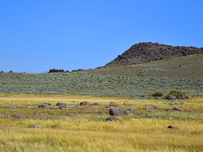 Photograph - High Desert Pasture by Sandra Lynn