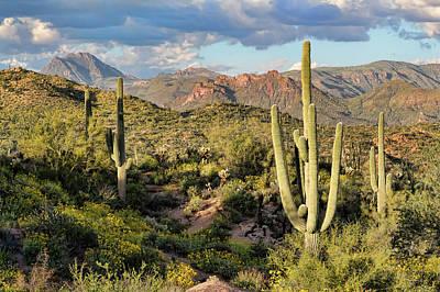 Photograph - High Desert Peaks by Ryan Seek