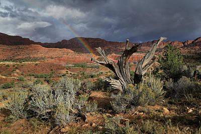 High Desert Rainbow Art Print by Gary Yost